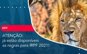 Ja Estao Disponiveis As Regras Para Irpf 2021 - Abertura Web