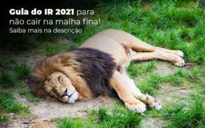Guia Ir 2021 Para Nao Cair Na Malha Fina Saiba Mais Na Descricao Post 1 - Abertura Web