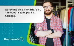 Aprovado Pleno Plenario O Pl 15852021 Segue Para A Camara Aberturaweb - Abertura Web